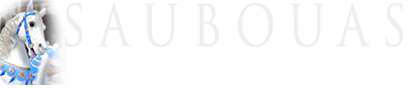 Saubouas breaking, pre-training, horses breeding, care, rest, sales